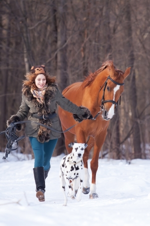 Beautiful young woman with a dalmatian dog and a horse of Don breed