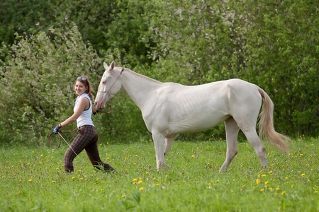 Beautiful young woman and Akhal-Teke horse in the meadow photo