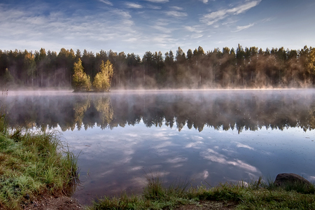 Sunrise at the lake in the forest photo