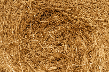 Harvest of hay stacked in spiral photo
