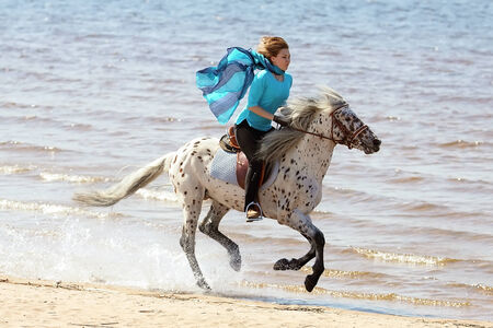 Girl in blue silk scarf rides a horse of Altai breed Stock Photo