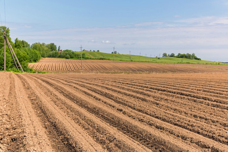 agri: Ploughed agricultural land with a cloudy sky above