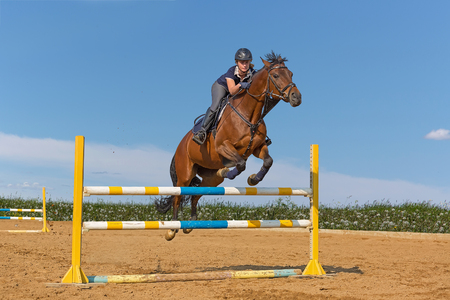 hurdle: Image of female rider with brown horse, jumping a hurdle Stock Photo