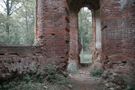 homestead: Ruins of old homestead in Gostilitsy. St. Petersburg, Russia