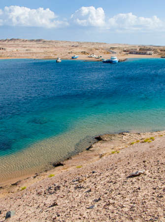 turtle bay on the Red Sea in Egypt photo