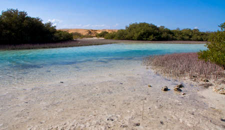 Magic lake in rea sea in Egypt photo
