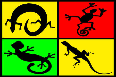 snake leather: composition of reptiles on multicolored background Stock Photo