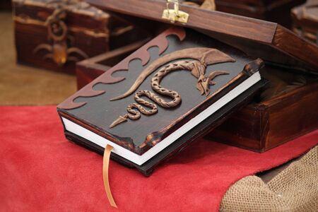 Medieval Journal made with skin and drawing a dragon