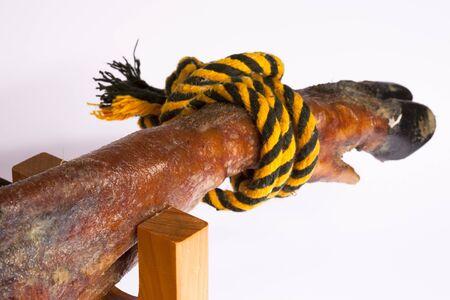 Sight of the leg of a highland ham of black leg Stock Photo - 11792174