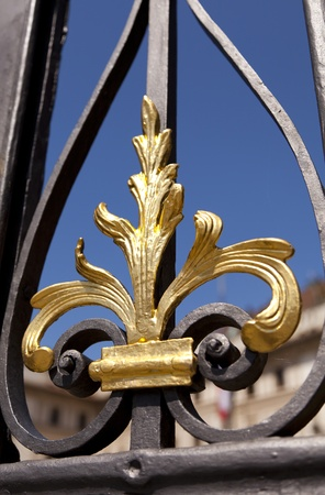 Details of an iron gate, in a palace in Prague photo