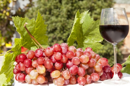 elaboration: Fresh grapes with red wine Stock Photo