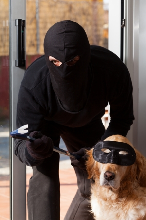 law breaker: Thief stealing in a house with his accomplice Stock Photo