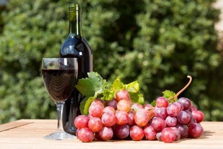Copa de vino negro con uvas reci�n cosechadas