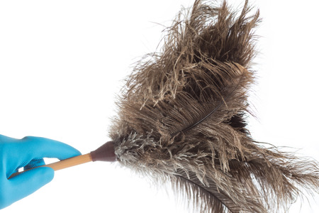 Hand of a girl with a feather duster cleaning photo