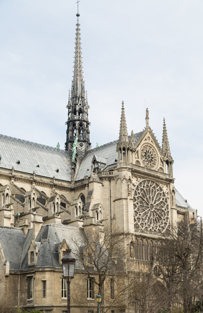 Notre Dame de Paris Cathedral on Cite Island, France photo