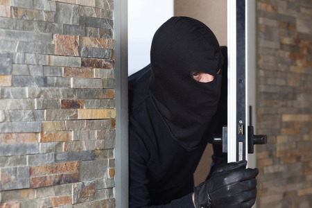 malefactor: Thief entering a private home to steal