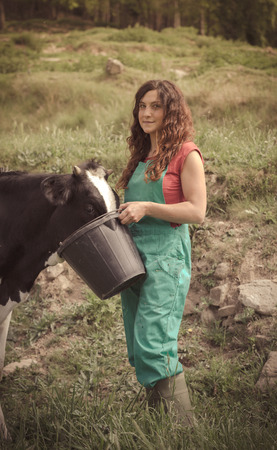 Farmer feeding cows on an organic farm photo