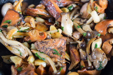 person appetizer: Sauteed wild mushrooms with garlic and parsley