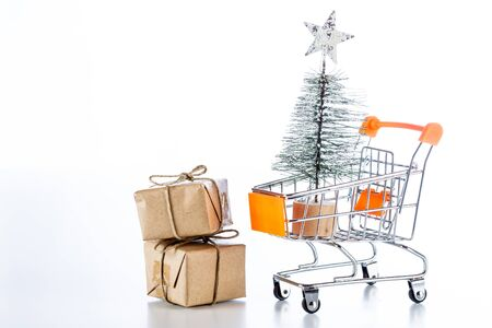 Shopping cart with Christmas shopping