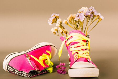 Sports shoes with dry decoration flowers Standard-Bild