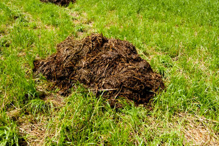 enrich: Manure - waste product of livestock. Used as a natural fertilizer or fuel.