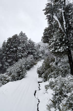 View of snowy road and trees on the Cerro Bayo (Bayo Hill), touristic destination in Villa La Angostura, Neuquen, Patagonia region of Argentina. Snowy spring day.