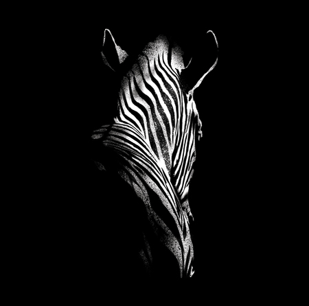 Illustration of zebra with brushes isolated on black background. For poster, banner and postcard.