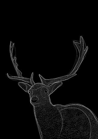 Deer illustration, drawing, ink, line art on black background. For poster, banner or decoration.