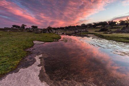 arroyo: Dawn in a lagoon near Arroyo de la luz. Spain.