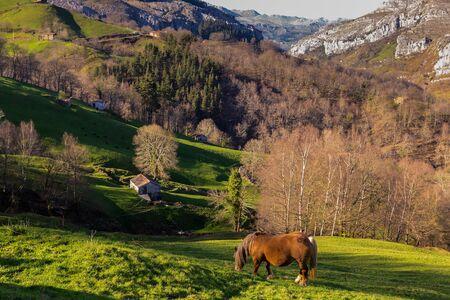 highlander: Los valles de Pasiegos se encuentran en el interior de Cantabria. España.