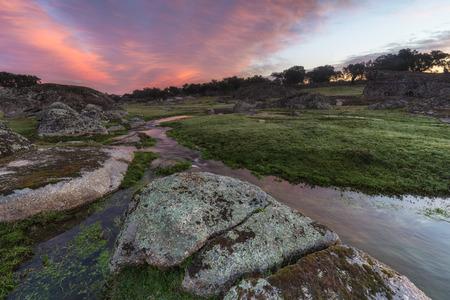arroyo: Dawn in a creek near Arroyo de la Luz. Extremadura. Spain.