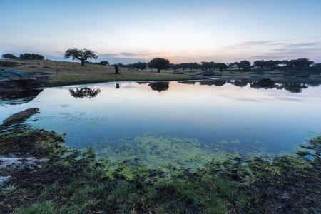 arroyo: Landscape near Arroyo de la luz. Extremadura. Spain. Stock Photo