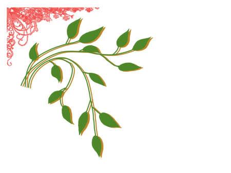 hojas: hojas Stock Photo