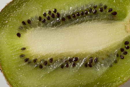 Half a kiwi showing his seeds and his white heart photo