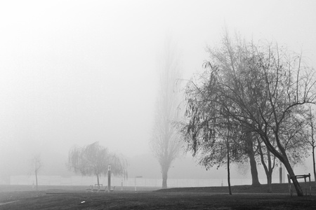 foggy: Black and White Foggy Landscape