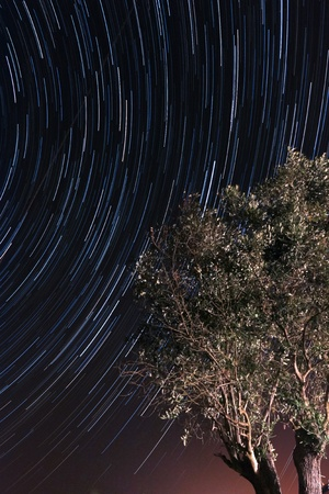 Awesome startrails effect on a clear, cloudless Summer night photo