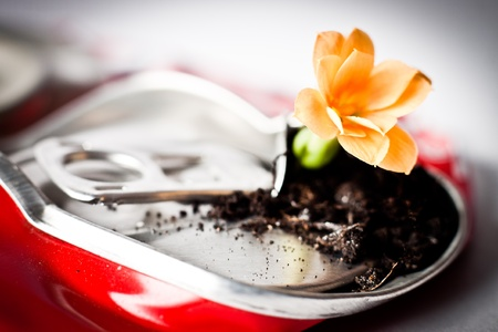 Crushed red can with flower growing from inside it photo