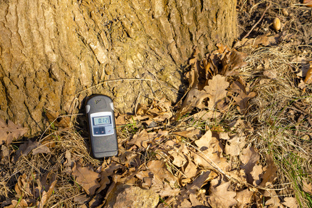 Dosimeter measures radiation background in the forest
