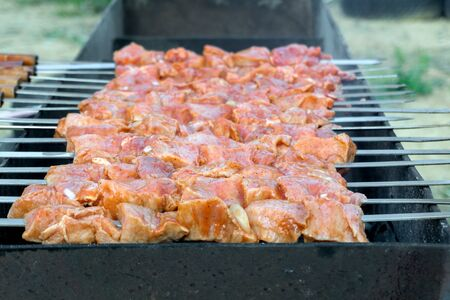 Cooking barbecue on the grill. Tasty, juicy kebab in a spicy marinade is cooked on the grill. Close-up