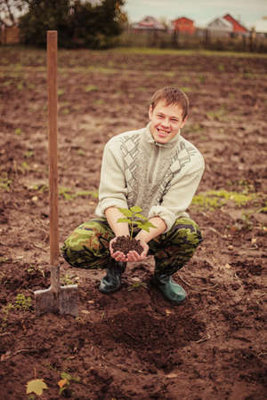 planting a tree: Gardener planting a tree