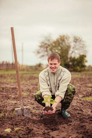 Gardener planting a tree  photo