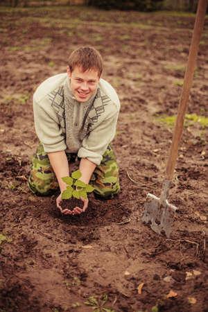 sembrando un arbol: Gardener plantar un �rbol
