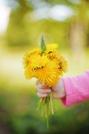 Цветы Фото со стока