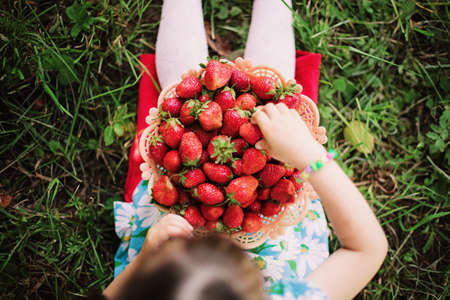Young girl holding strawberries  Stock Photo