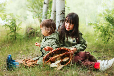 The children gather mushrooms in the forest. Stock Photo