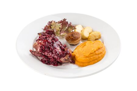 duck breast roasted with sweet cranberry sauce and mashed squash isolated on white background side view