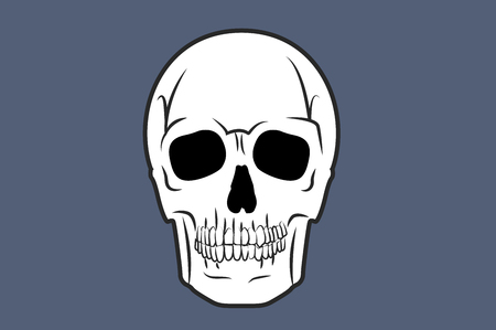 Vector Illustration of a Skull