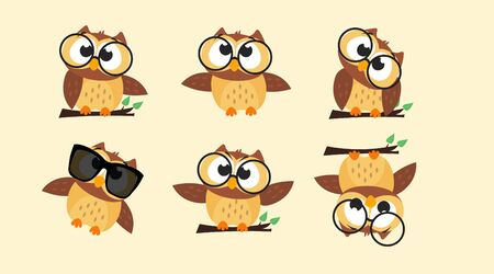 Collection of Owls in different poses