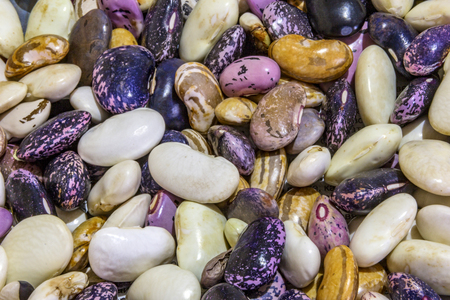 Beautiful mixed colorful beans as background. Raw colorful bean texture. Food photo 免版税图像