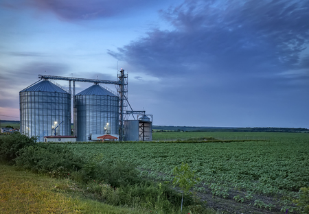 Landscape with modern agricultural Silo. Set of storage tanks cultivated agricultural crops processing plant.